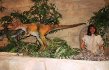 Display from the Creation Museum