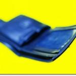 Empty Wallets, Gutted Freedom