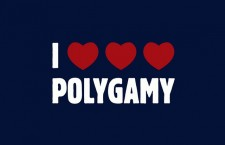 What Couldn't Happen: Pushing for Polygamy