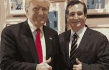 A Cruz-Trump Alliance?