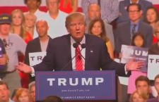 12 Top Reasons for Conservatives to Support The Donald