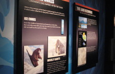 From the Creation Museum