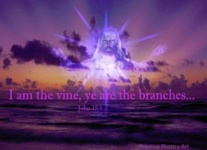 Jesus_vine