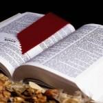 Understanding Evil: The Wearisome Task