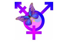 Gender Identity, or Reality?